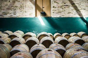 Vintønder vingård Spanien